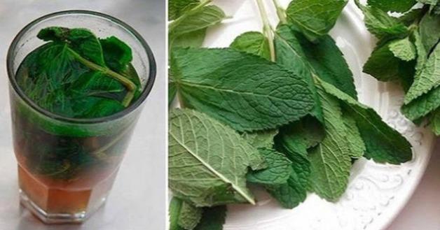 Photo of Como limpar o fígado com hortelã